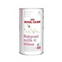 Babycat milk féline health...