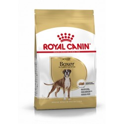 Boxer Adult breed health...